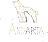 Logo de ANDARTA PICTURES